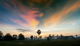 Paisagem com o céu da saturação no nascer do sol imagens de stock