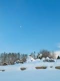 Paisagem com o jardim coberto de neve na noite do inverno Fotografia de Stock Royalty Free