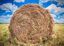 Paisagem com o monte de feno no campo Foto de Stock Royalty Free