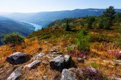 Paisagem com o rio com os bancos rochosos íngremes Imagem de Stock