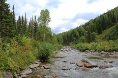 Paisagem com o rio da montanha no verão fotografia de stock
