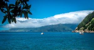 Paisagem com oceano, barcos, montanhas e ramo de árvore Ba?a de Tasman, ?rea de Nelson, Nova Zel?ndia foto de stock royalty free