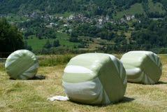 Paisagem com os pacotes de feno em Olivone Fotos de Stock Royalty Free