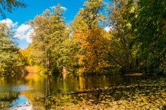 Paisagem com outono do lago pequeno Imagens de Stock Royalty Free
