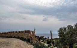 Paisagem com penhascos de Dingli e vistas majestosas do mar Mediterrâneo e do campo luxúria, Malta fotografia de stock