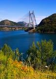 Paisagem com ponte cabo-ficada Imagens de Stock Royalty Free