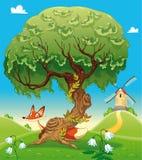 Paisagem com a raposa atrás da árvore. Fotografia de Stock Royalty Free