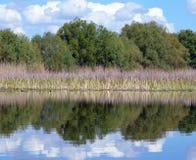 Paisagem com reflexão da água Fotos de Stock