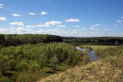 Paisagem com rio e floresta Imagem de Stock Royalty Free