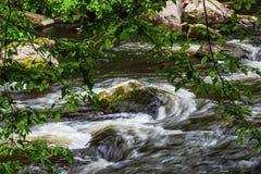 A paisagem com rio prognostica na área de Harz, Alemanha Imagens de Stock