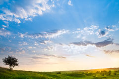 Paisagem com um céu bonito Imagem de Stock