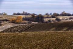 Paisagem com um campo agrícola Fotografia de Stock
