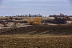 Paisagem com um campo agrícola Imagem de Stock Royalty Free