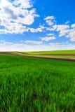 Paisagem com um campo de exploração agrícola Foto de Stock Royalty Free
