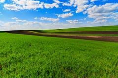 Paisagem com um campo de exploração agrícola Foto de Stock