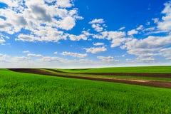 Paisagem com um campo de exploração agrícola Imagens de Stock