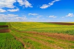 Paisagem com um campo de exploração agrícola Imagem de Stock