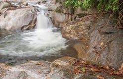Paisagem com um rio da montanha Imagem de Stock