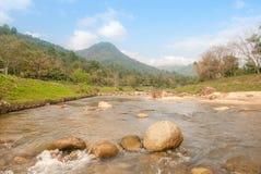 Paisagem com um rio da montanha Foto de Stock Royalty Free