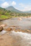 Paisagem com um rio da montanha Imagem de Stock Royalty Free