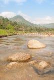 Paisagem com um rio da montanha Fotografia de Stock Royalty Free