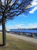 Paisagem com uma árvore, um rio e um veleiro foto de stock royalty free
