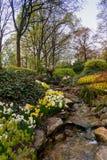 Paisagem com uma angra da água Jardins de Keukenhof nos Países Baixos Imagens de Stock