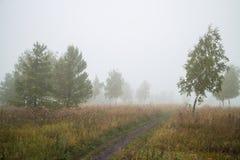 Paisagem com uma estrada Foto de Stock Royalty Free