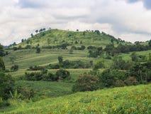 Paisagem com uma montanha Foto de Stock Royalty Free