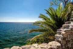 Paisagem com uma palmeira e uma fortificação Fotos de Stock Royalty Free