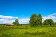 Paisagem com uma vila inoperante Burdovo Foto de Stock Royalty Free