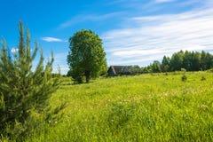 Paisagem com uma vila inoperante Burdovo Imagem de Stock Royalty Free