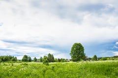 Paisagem com uma vila inoperante Burdovo Fotos de Stock
