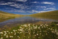 Paisagem com uma vista do lago Foto de Stock