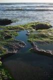Paisagem com vistas do mar Fotos de Stock