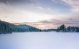Paisagem congelada do lago Foto de Stock Royalty Free