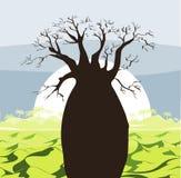 Paisagem da árvore do Baobab com montes verdes e sol Silhueta do Baobab Fundo africano do nascer do sol ilustração do vetor