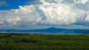 Paisagem da agricultura com campos do teff e do lago Koka, Etiópia fotografia de stock royalty free