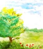 Paisagem da aquarela com árvore, flores e céu ilustração do vetor