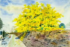 Paisagem da aquarela da pintura de flores douradas da árvore Fotografia de Stock Royalty Free