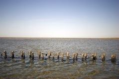 Paisagem da baixa maré de mar de Wadden Imagem de Stock