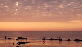 Paisagem da beleza com nascer do sol sobre o mar Fotos de Stock