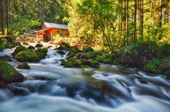 Paisagem da beleza com rio e floresta em Áustria, Golling fotos de stock royalty free