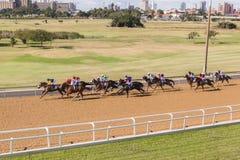 Paisagem da corrida de cavalos Fotografia de Stock Royalty Free