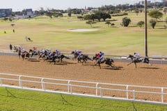 Paisagem da corrida de cavalos Fotos de Stock Royalty Free