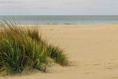 Paisagem da duna em Huelva, Espanha Fotos de Stock Royalty Free