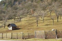 Paisagem da exploração agrícola Fotografia de Stock Royalty Free