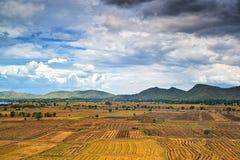 Paisagem da exploração agrícola no campo, Tailândia Fotografia de Stock Royalty Free
