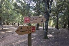 Paisagem da floresta com caminhada de sinais do trajeto ao longo da caminhada drystone fotografia de stock