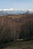 Paisagem da floresta da montanha na luz do por do sol Fotos de Stock